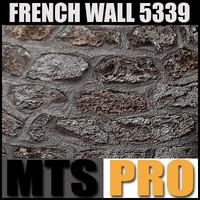 Wall_Stone_5339