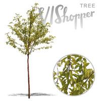 VIShopper_plant02