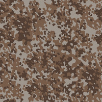 Camouflage Military Pack