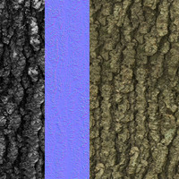 Tree Bark Tileable Texture 1