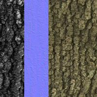 Tree Bark Tileable Texture 1
