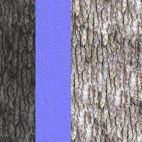 treeBark_5_DisplayImage.jpg