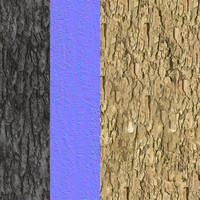 Tree Bark Tileable Texture 3