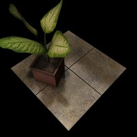 Stone Tiles Collection A