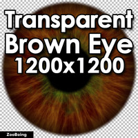 Biology 043 - Brown Eye