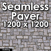 Stone 069 - Paver