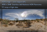 DESERT BLOOM HDR 360 PANORAMA # 013