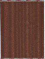 Wood Veneers x50