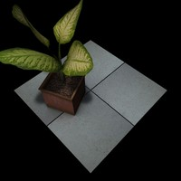 Stone Beige Victoria 2 Tiles B