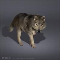 Dummy(Wolf)