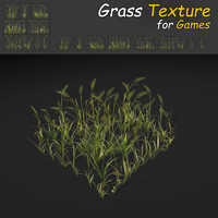 Wheat Grass Texture