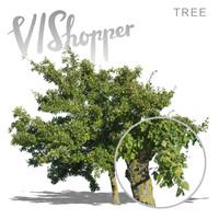 VIShopper_plant01
