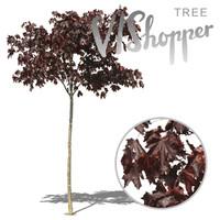 VIShopper_plant04