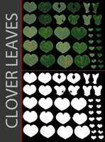 Clover leaves with alpha