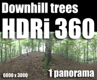 Hdr Downhill trees