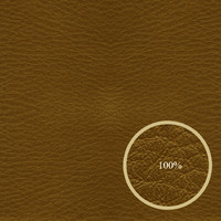 Brown leather Texture map
