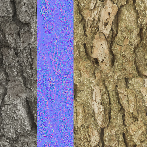 treeBark_10_DisplayImage.jpg