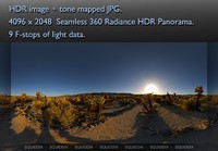 DESERT CACTUS GARDEN AT SUNSET 360 HDR PANORAMA # 063