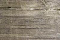 Plank_Texture_0008