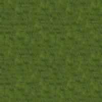 Grass_037 sc