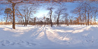 Park with snow HDR