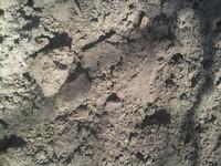 Landscpae Soil