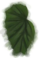 Painted Leaf texture
