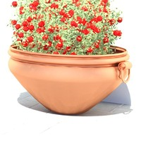 Planter_Copper