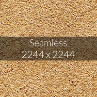 Sesame texture map 04