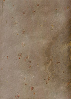 Stone Tile Brown Spots