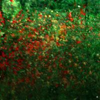Digital Artwork_Flowers_3