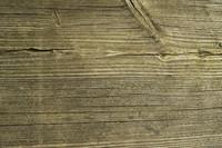 Plank_Texture_0009