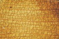 Cracked_Texture_0001