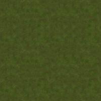 Grass_009 sc