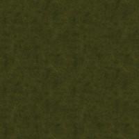 Grass_016 sc