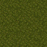 Grass_019 sc