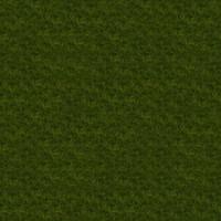 Grass_021 sc
