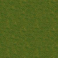 Grass_031 sc