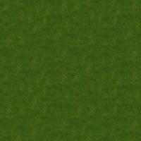 Grass_048 sc