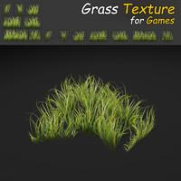 Dense Grass Texture