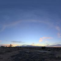 Mojave Desert 54