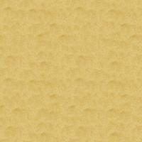Sand_036 sc