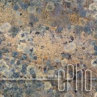 TEXTURE - Seamless Lichen Covered Sandstone