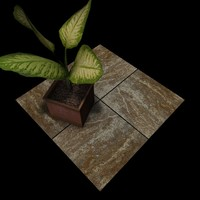 Stone Travertine Tiles B