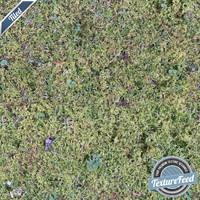 Grass Texture 03 | Tiled