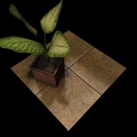 Stone Tiles 002 A