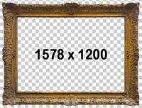 Classical Frame 739