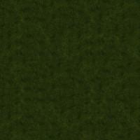 Grass_005 sc