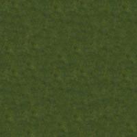 Grass_033 sc