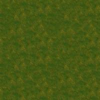 Grass_043 sc